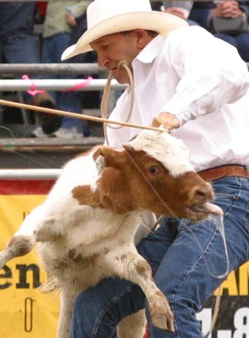 calf ropingcrop