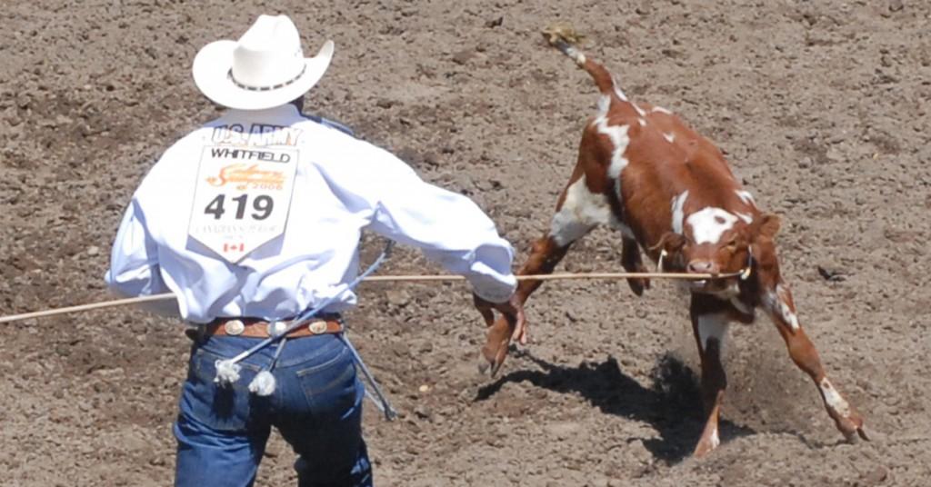 Calf roping Cal Stamp J Mc