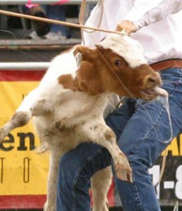 calf roping040522Rodeo082cropresize