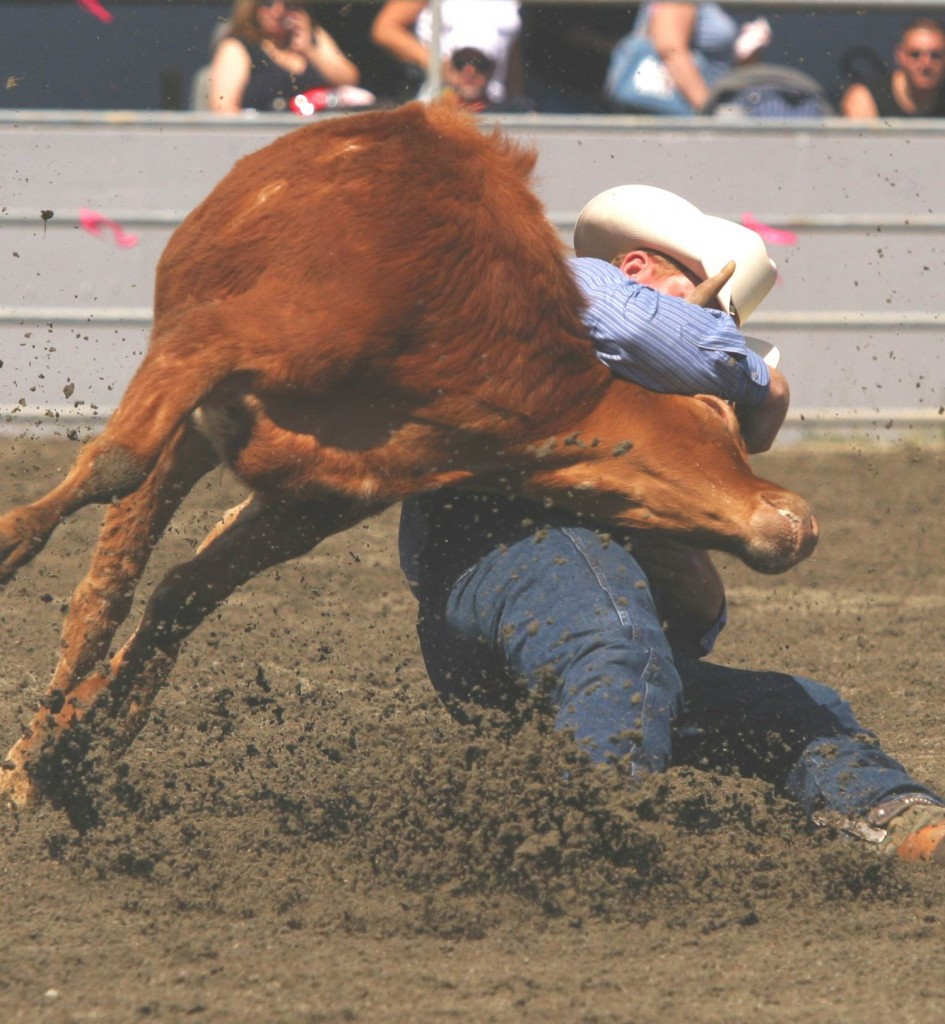 dead steer1 040523Rodeo046