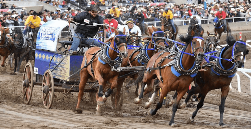 GM Canada should stop sponsoring the Calgary Stampede chuckwagon race