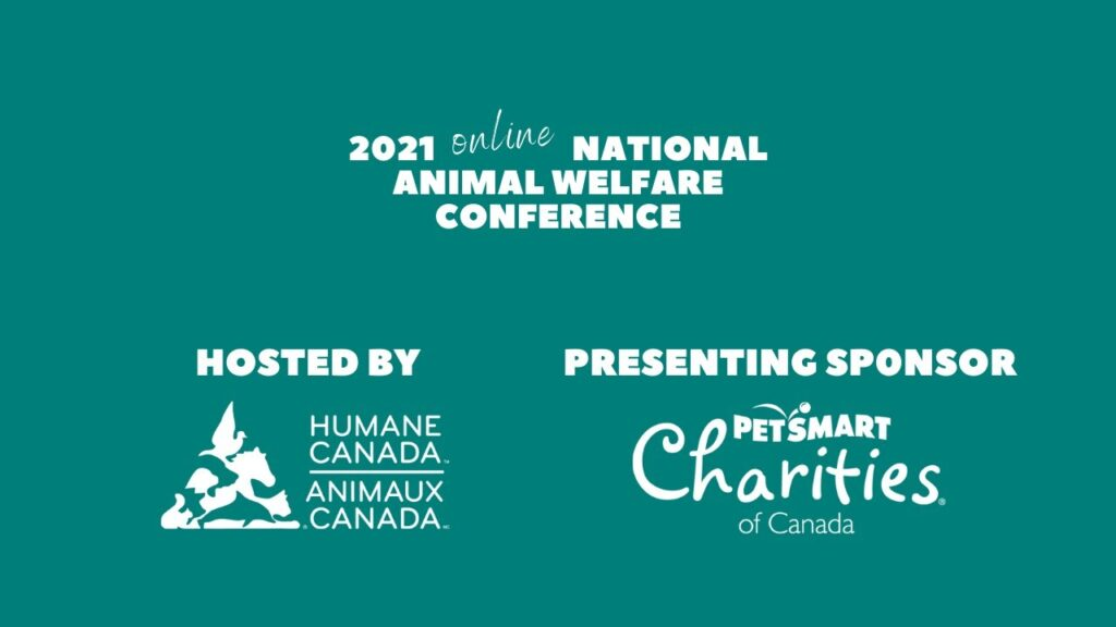 VHS to present research at the National Animal Welfare Conference