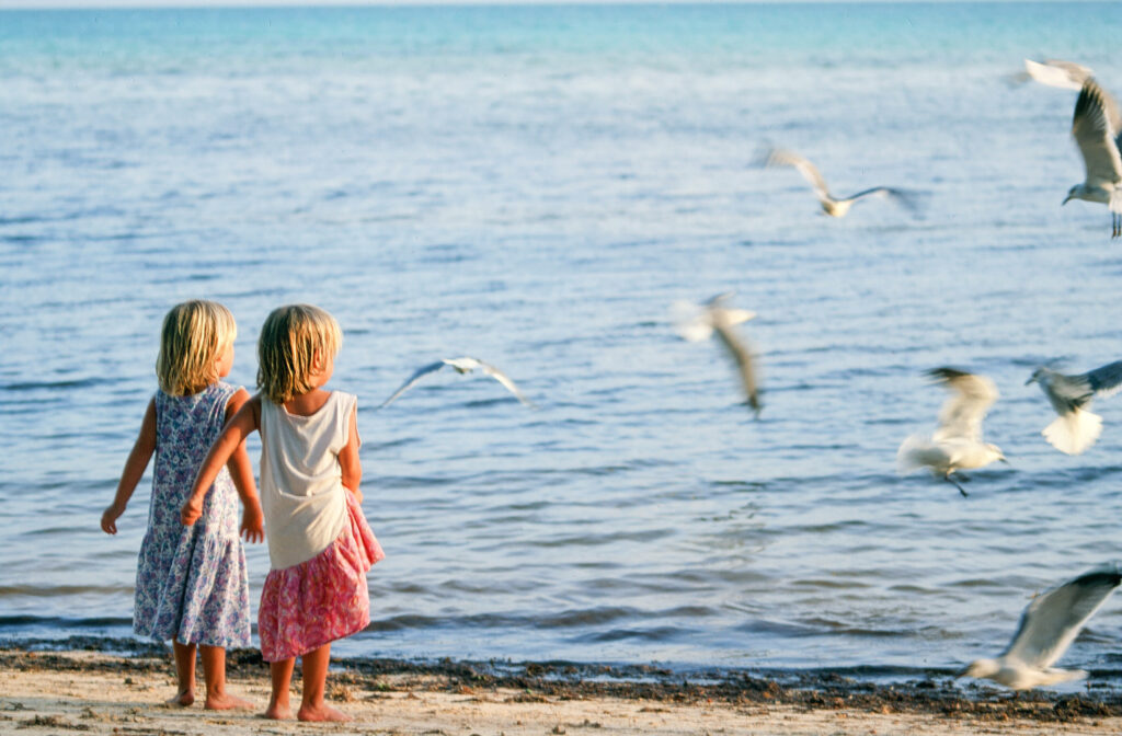 Two young children looking out at seagulls on the ocean.