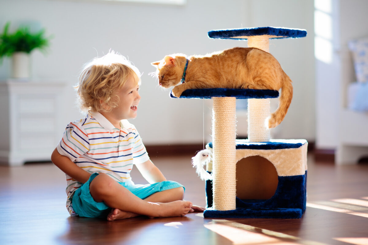 Child playing with cat in a home.